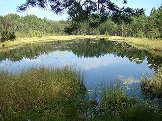 Dobrovsky District - Lake in Dobrovsky District