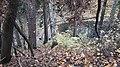 Парк. Вики-встреча 24.10.2020 01.jpg