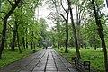 Парк Шевченка Стрий 3.jpg
