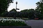 Парк имени Горького в Москве. Фото 52.jpg