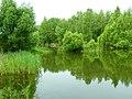 Плотина на реке Крутица.jpg