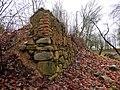 Развалины домика герцога Екаба Hercoga Jēkaba medību pils drupas (3) - Bontrager - Panoramio.jpg