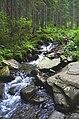 Річка Прут коло підніжжя Говерли.jpg