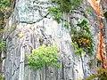 Скалистый берег(Исм.Альберт) - panoramio.jpg