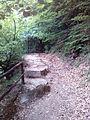 Смоларски водопад 52.jpg