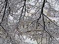София - 21.01.2012 - panoramio (19).jpg