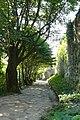 Теребовлянський замок, стіна.jpg