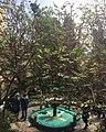 حیاط موزه مقدم.jpg