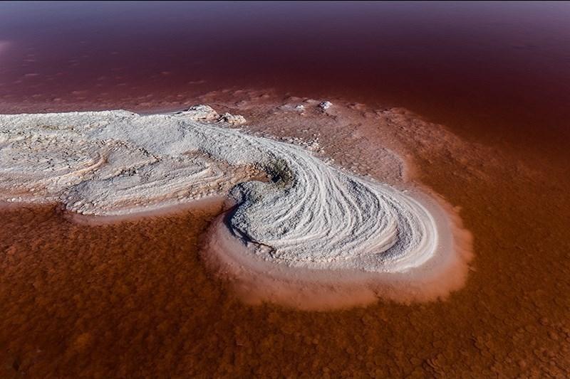 سرخی دریاچه ارومیه-۴