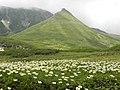 大塚 (Mount Ōtsuka) - panoramio.jpg