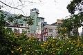 小米酒博物館 Millet Wine Museum - panoramio.jpg