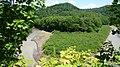 幾春別川 - panoramio.jpg