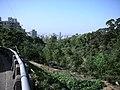 行義路到陽明山健行 - panoramio - Tianmu peter (8).jpg