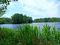 0023. Pargolovo. Finnish lake.jpg