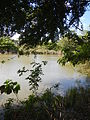 07976jfPampanga River banks Candelaria Boats Fish Delta Bulacan Roadsfvf 07.JPG