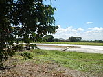 09843jfBinalonan Pangasinan Province Roads Highway Schools Landmarksfvf 04.JPG
