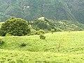 15060 Carrega Ligure, Province of Alessandria, Italy - panoramio.jpg