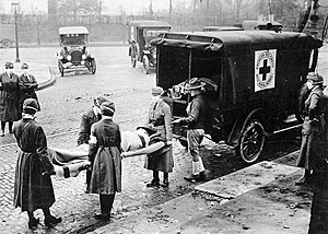 "Pandemic - The 1918–1919 ""Spanish flu"" pandemic resulted in dramatic mortality worldwide."