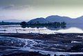 1971 - lái xe buổi sáng ra Tuy Phước, phía bắc thành phố Qui Nhơn (9677378017).jpg