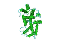 1D9C Bovine-Interferon-Gamma01.png