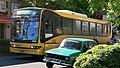 1 M ROSARIO BUS.jpg