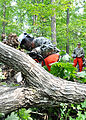 1st Battalion chops down trees during AT 110915-A--686.jpg