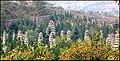 20090525-02-pagoda-forest shalolin beifan.jpg
