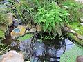 20120304 Tuin van Kina (0020).jpg