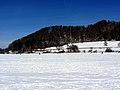 2012 'Seegfrörni' - Türlersee - Hausen am Albis 2012-02-18 12-50-38 (SX230).JPG