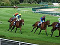 2012 Hippodrome de Longchamp Juddmonte After race1.JPG