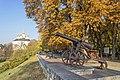 2014 Chernihiv Гармати з бастіонів Чернігівської фортеці Фото 3.jpg