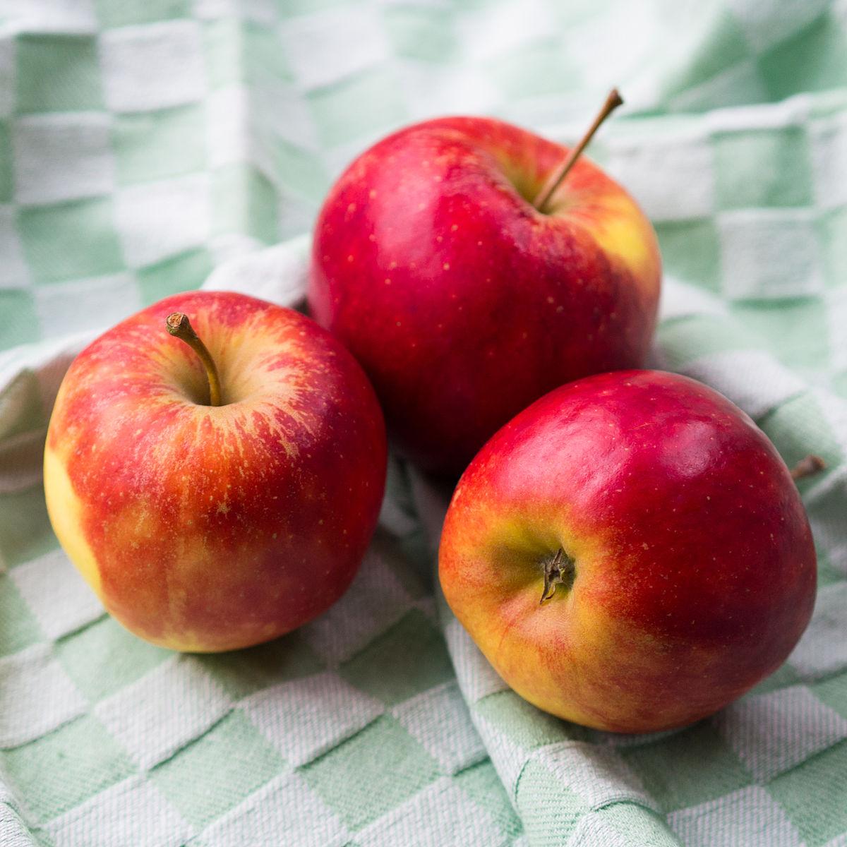 2015 01 Dutch elstar apples.jpg