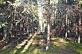 2015 14 Национальный парк Мещёрский.jpg