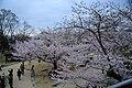 20160403 Himeji-Castle 3483 (26732445232).jpg
