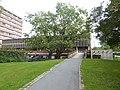 2019-08-23 Universitetet i Oslo 005.jpg