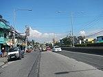 2387Elpidio Quirino Avenue NAIA Road 41.jpg