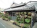 2 Chome, Shimoda, Shizuoka Prefecture 415-0022, Japan - panoramio (1).jpg