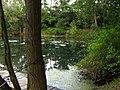 37154 Northeim, Germany - panoramio (1).jpg