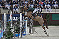 54eme CHI de Genève - 20141212 - Steve Guerdat et Albführen's Paille 6.jpg