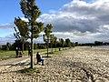 6810.Schildmeer Recreatie Centrum Camping Jachthaven De Otter Steendam.jpg