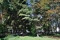 71-212-5052 Tagancha park SAM 3353.jpg