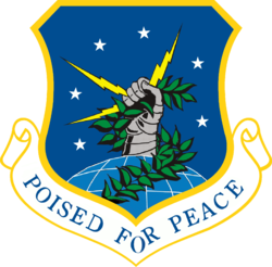 91st Space Wing.png