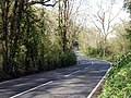 A3078 winding through the woods near Freewater - geograph.org.uk - 412784.jpg