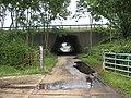 A40 underpass - geograph.org.uk - 882226.jpg