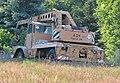 ADK V 5 Panther im hohen Gras erwischt.jpg