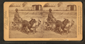 A stylish Virginia turnout, U.S.A. (showing African American boy in goat cart), from Robert N. Dennis collection of stereoscopic views.png