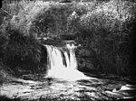Above Leura Falls, Katoomba (2429897127).jpg