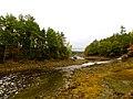 Acadia National Park (8111147306).jpg