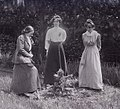Adela Pankhurst, Kitty and Annie Kenney 1910.jpg