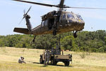 Air Cav battalion conducts sling load training 140710-A-WD324-026.jpg